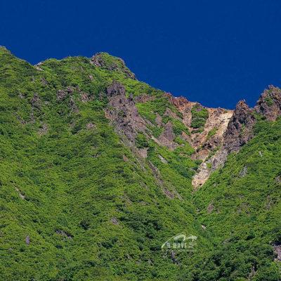 朝日岳 定点 緑
